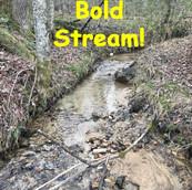 Bold Stream
