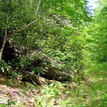 Ashe County Land on Big Horse Creek
