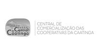 PARCEIRO - Central da caatinga PB.png