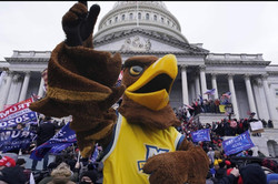 Marquette mascot spotted at insurrection