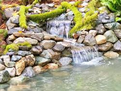 Serenity pond - west falls