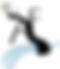 Arborea Falls logo
