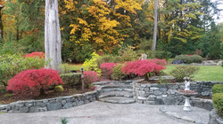 Front gardens in fall
