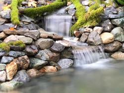 Serenity pond - east falls