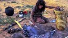 A Nambikwara woman toasting locusts