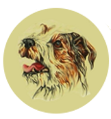 logo-xx.png