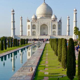 Taj Mahal with dog