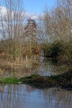 4210305 5 Lynton Court Flood Water R