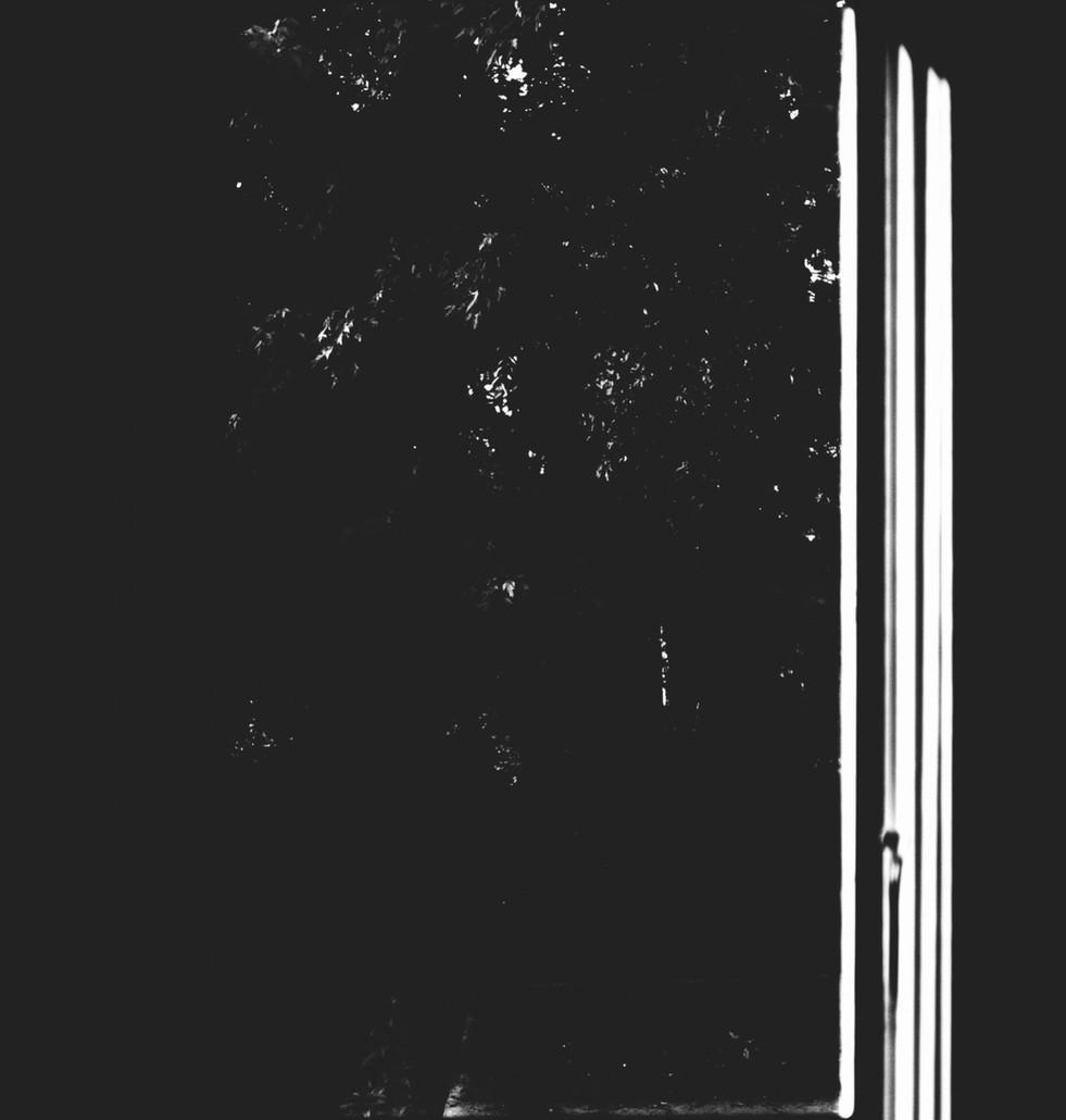 untitled-3_edited.jpg