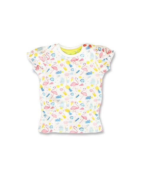 Tee shirt Flamands