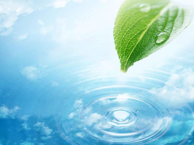 greenleafwater2-1.jpg
