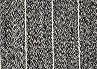 Latitude Blacktop.jpg