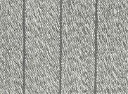 Latitude Platinum.jpg