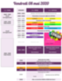 2019.05.08_Planning WCS Vendredi V2.png