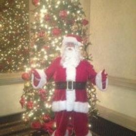 Santa Stevie