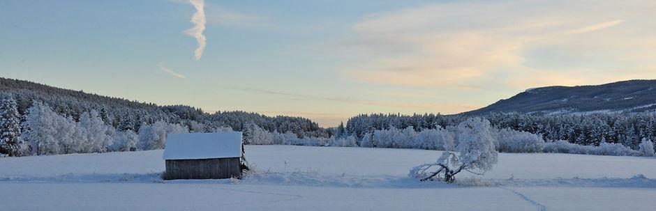 Ski-Din-Taxi-Hemsedal-02_edited.jpg