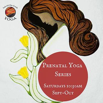 Prenatal Yoga Series.png