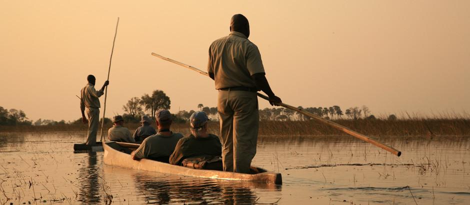 Dreaming of Botswana