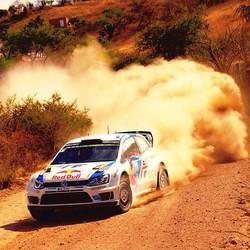VW Rally 2014