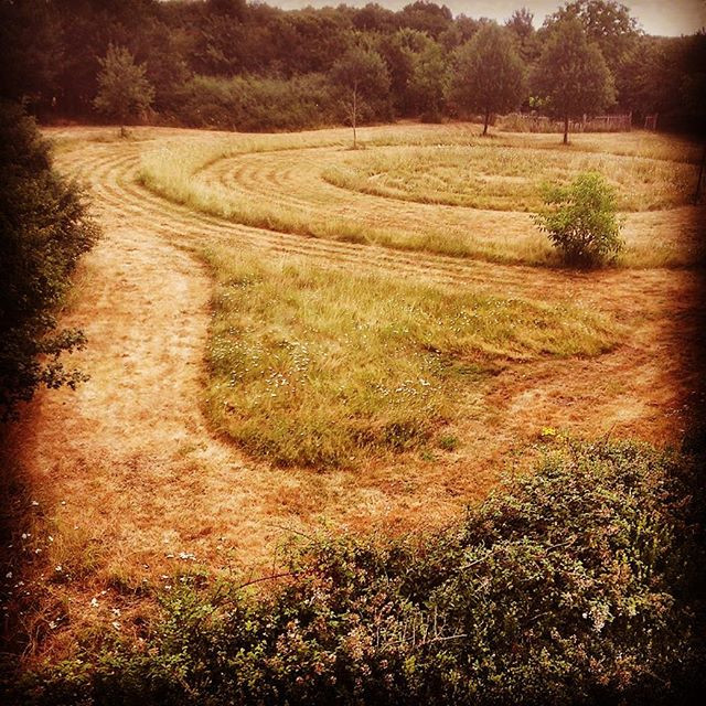 Wedding Labyrinth