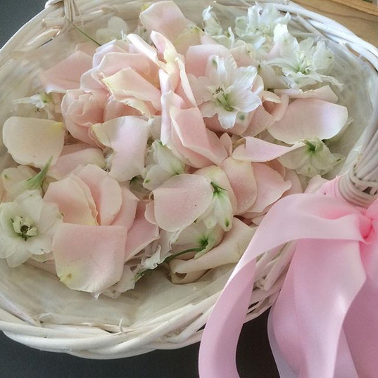 Petals for yesterday's wedding at Jarnac
