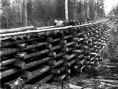 Townsend, WI logging