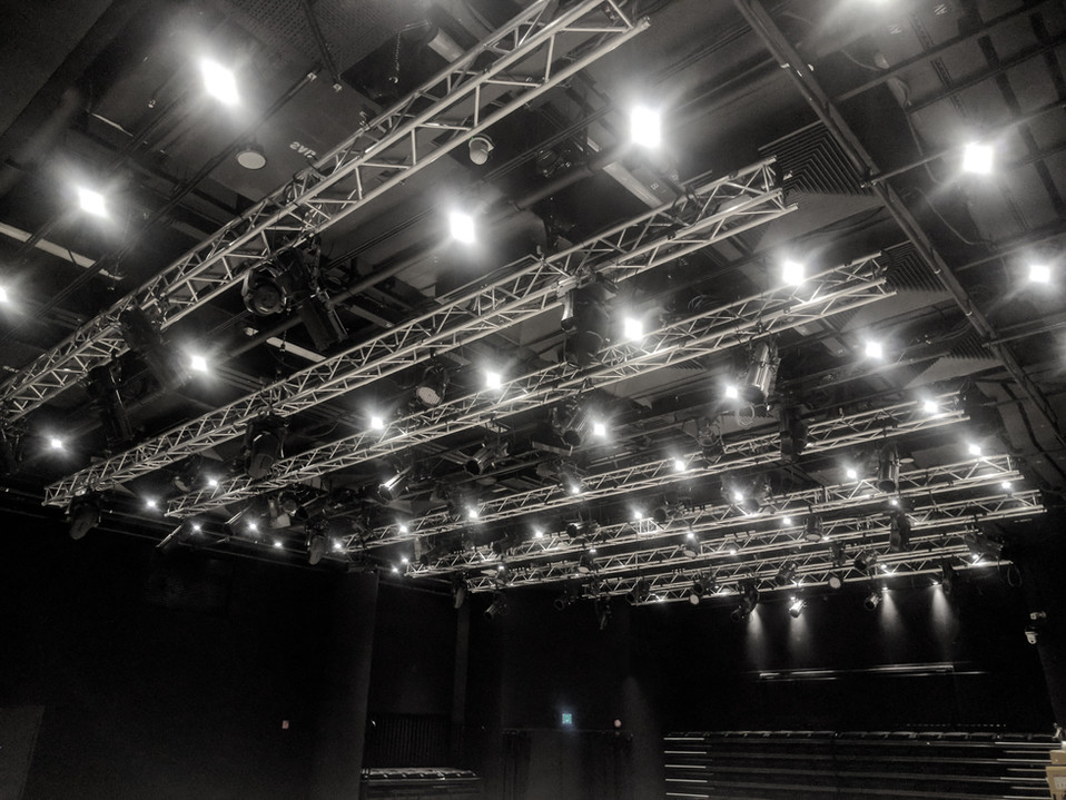 NEW ARTISTREE RIGGING INSTALLATION