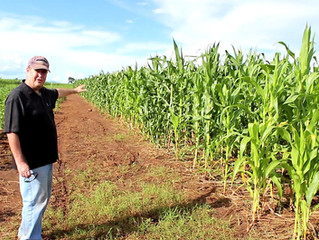 From the corporate world in the USA to a farmer in an African village