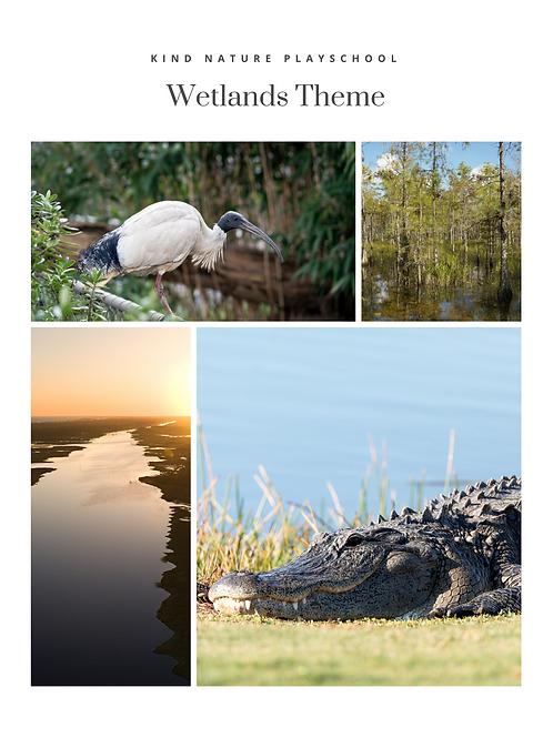 Wetlands Nature PlaySchool Theme