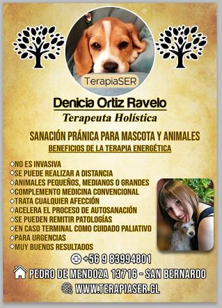 SANACIÓN PRÁNICA PARA MASCOTAS Y ANIMALES: