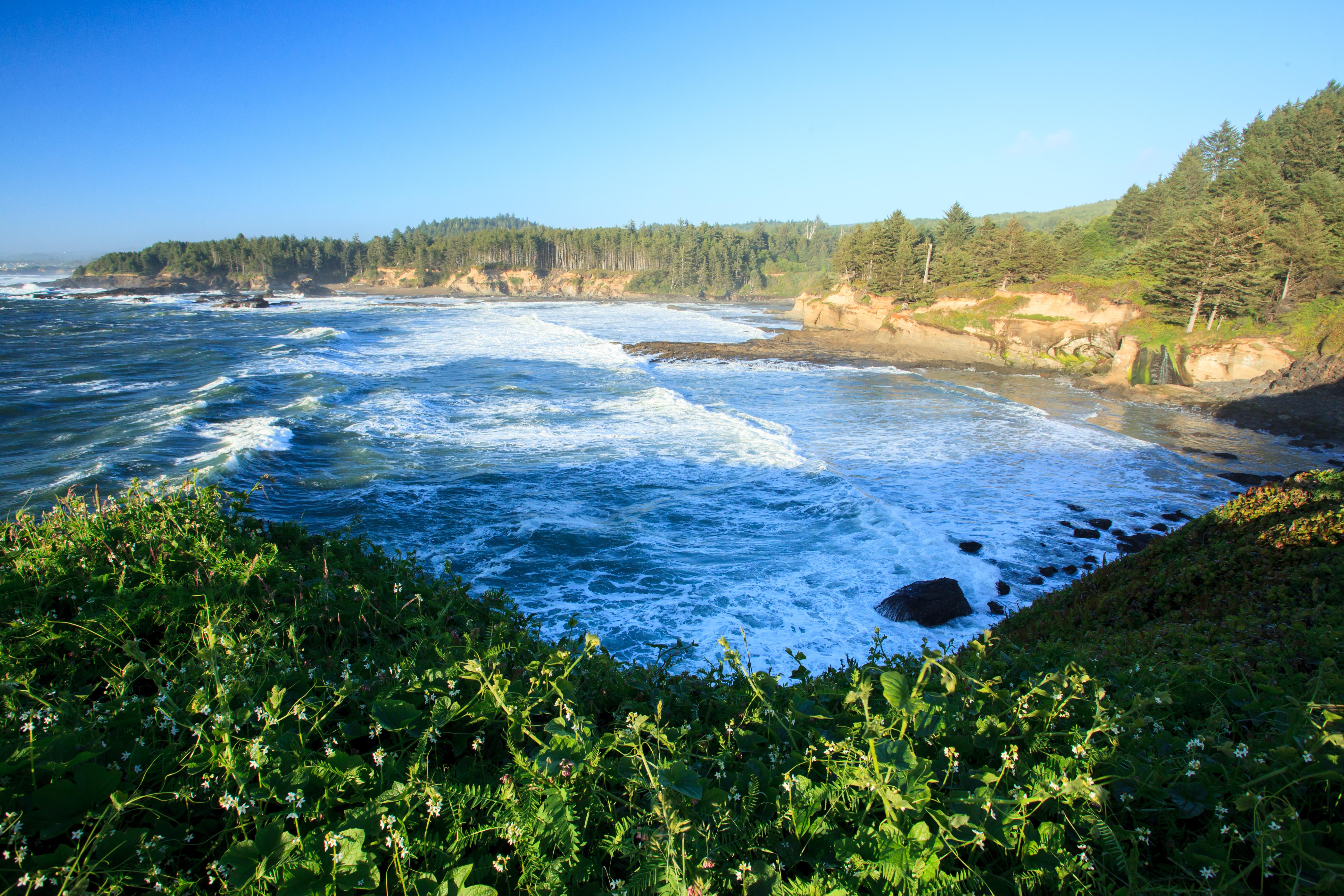 Oregon Coast Vista
