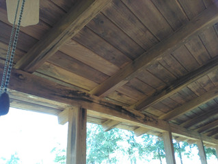 How to remove mold from a log cabin ceiling ?