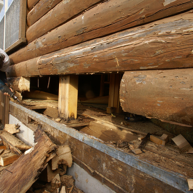 rotten log home 2