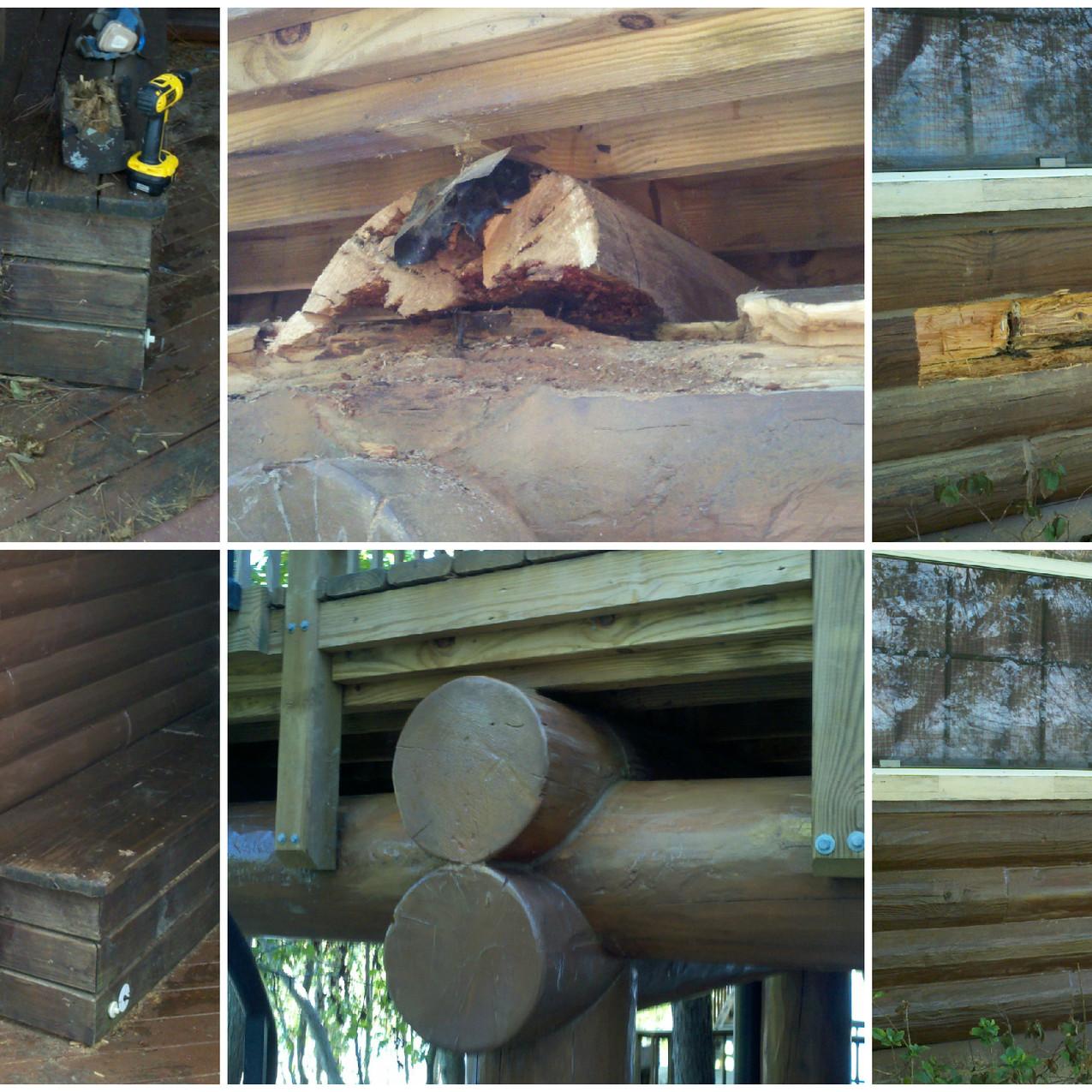 Log Home Rot Repair 3