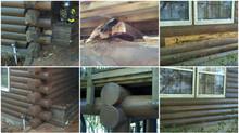 Blending a log home repair / Boneyard Method