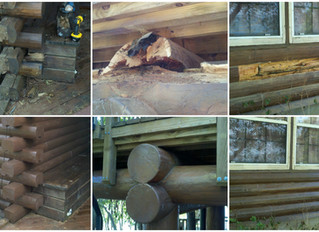 Blending a log home repair / Boneyard Method