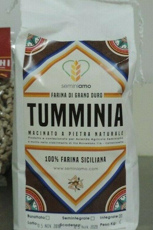"""farina di grano duro """" TUMMINIA """" macinata a pietra 100 % Siciliana 1 kg"""