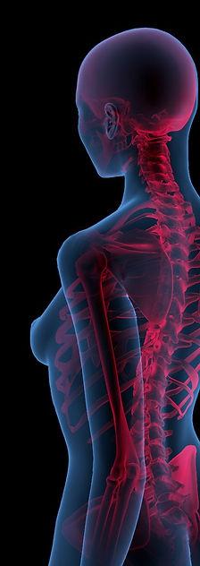 Back Pain Medical Ilustration