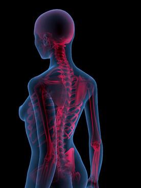 Back Pain Rx