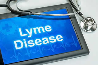 Tablet with the diagnosis Lyme Disease o