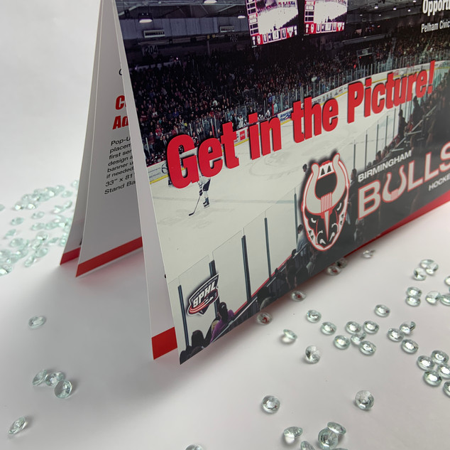 Birmingham Bulls | Sports Marketing Materials