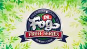 Dr Fog Fruit Series