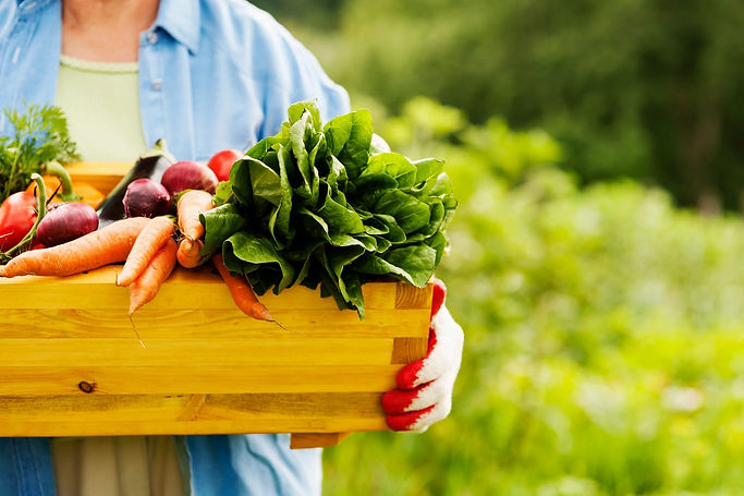 organic living home page.jpg