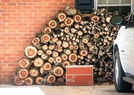 Store firewood at least 20' from your home!