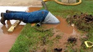 Septic Systems Can Scare the Crap Out of You!
