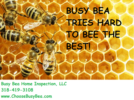 Busy Bea Home Inspection, LLC Tries to BEE the BEST
