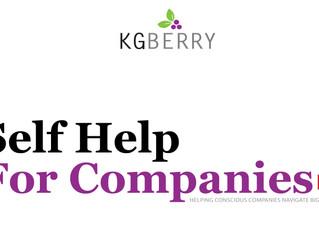 Self Help for Companies