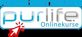 onlinekurs.png