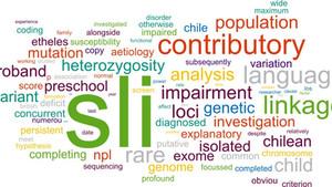 Ειδική Γλωσσική Διαταραχή - ΕΓΔ (Specific Language Impairment - SLI)