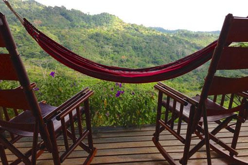 toucan-macaw-balcony-view.jpg